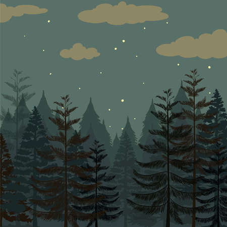 pine trees: Pine forest at night time illustration