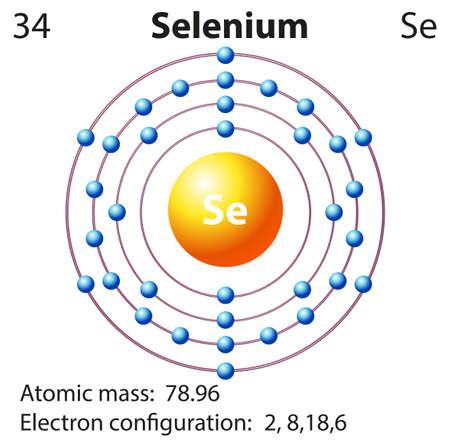 el atomo: Diagrama de símbolo y de electrones para Selenio ilustración