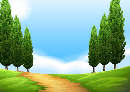 Nature scene with trail and pine tree illustration