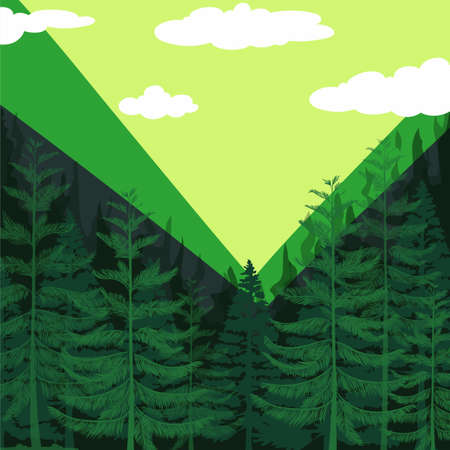 pine forest: Pine forest with green background illustration