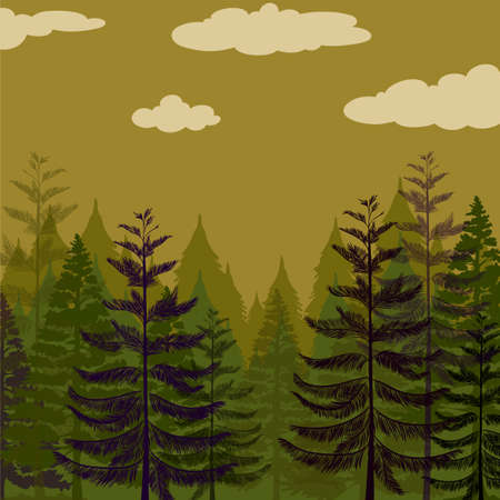 pine forest: Pine forest and green sky illustration Illustration