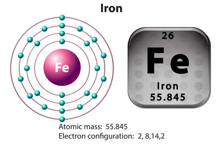 Symbol and electron diagram for Iron illustration