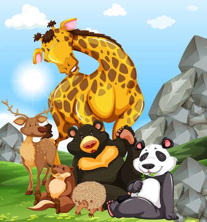 the zoo: Los animales salvajes sittin en ilustraci�n de tierra