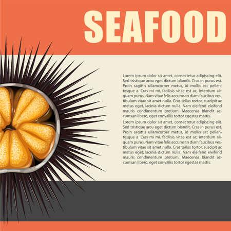 Mariscos cartel con la ilustración de erizo de mar Ilustración de vector