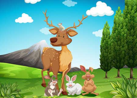 wild living: Wild animals in the field illustration
