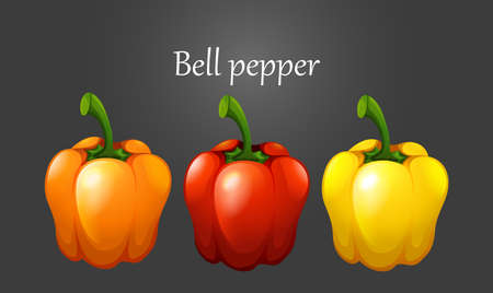 organic peppers sign: Three colors of bell pepper illustration