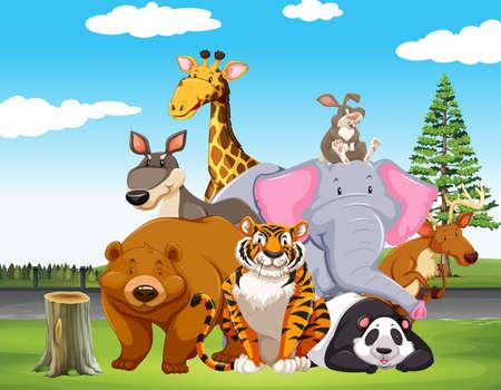 endangered: Wild animals in the field illustration
