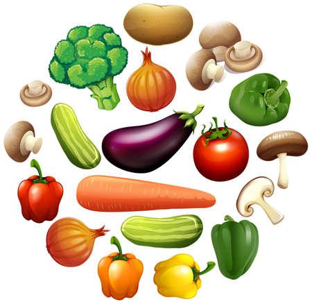 bell tomato: Different kind of vegetables illustration