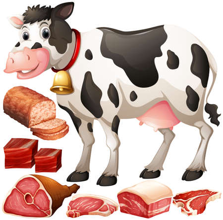 raw beef: Cow and meat products illustration