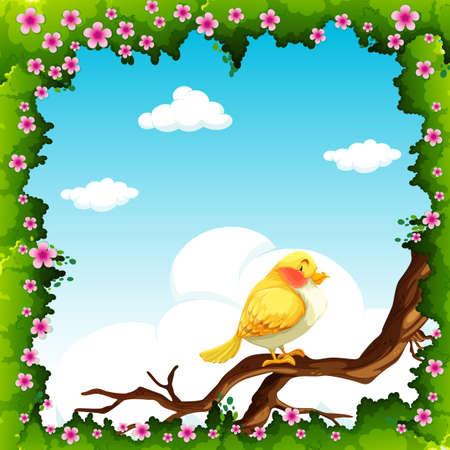 aves caricatura: Pájaro amarillo en la ilustración de la rama