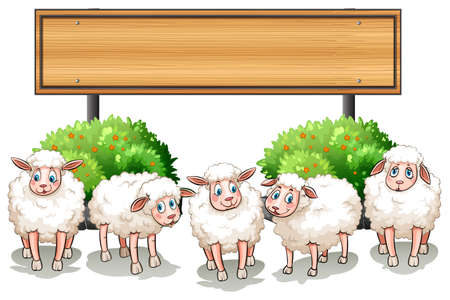 farm animal cartoon: Sheeps and wooden sign illustration