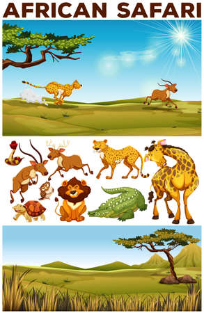 zoo: Safari theme with wild animals in the field illustration