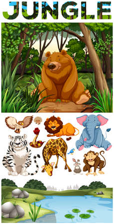 wild living: Wild animals living in the jungle illustration Illustration
