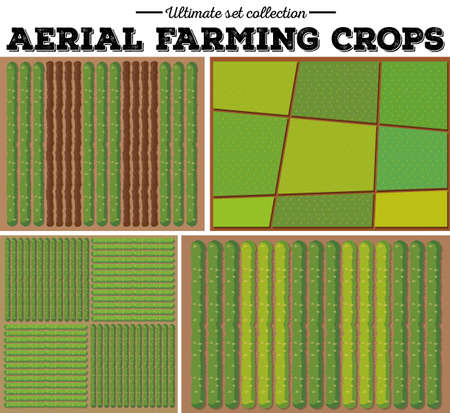 harvesting rice: Aerial farming crops pattern illustration