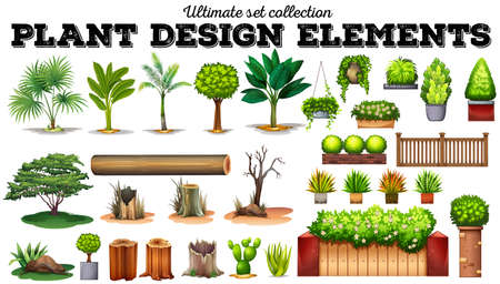 platano caricatura: Muchos tipos de plantas de ilustración Vectores