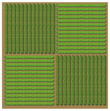 rows: Simple pattern of crop illustration