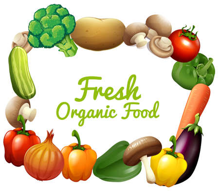 Border design with fresh vegetables illustration