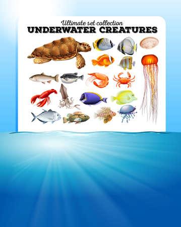 sea animals: Sea animals and the ocean illustration