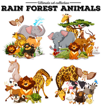 Different kind of rainforest animals illustration