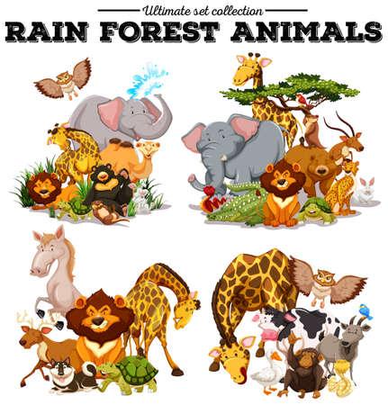 Verschillende soorten regenwoud dieren illustratie