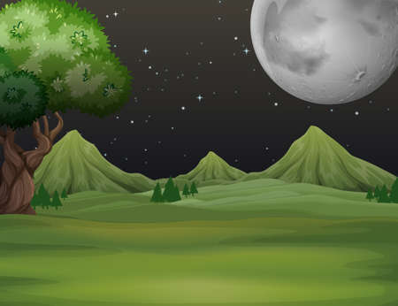 Green field at night time illustration