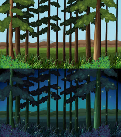fireflies: Forest scene at day time and night time illustration Illustration