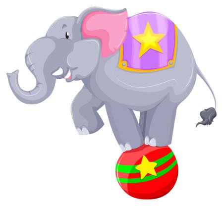 art show: Gray elephant balancing on the ball illustration