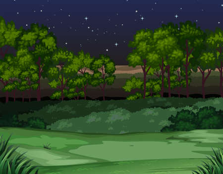 Nature scene at night illustration