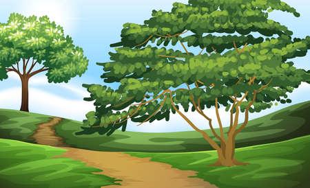 dirtroad: Dirtroad in the green field illustration Illustration