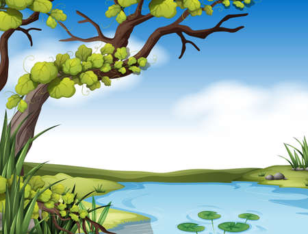 river bank: River scene with tree on the river bank illustration Illustration