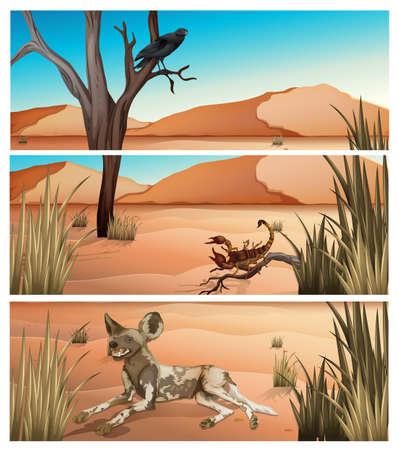 birds desert: Wild animals living in dessert illustration