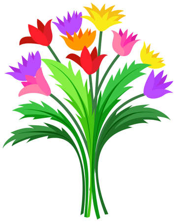bunch: Bunch of colorful flowers illustration Illustration