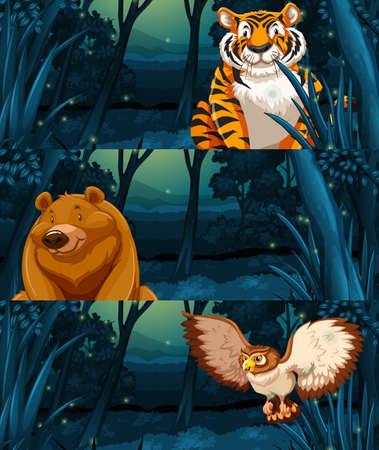 Wild animals in the woods at night illustration Illustration