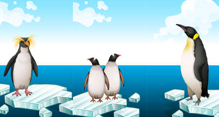 Penguins standing on iceberg illustration