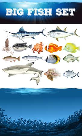puffer fish: Sea animals and ocean scene illustration Illustration