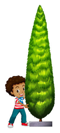 adolescent african american: Little boy and pine tree illustration