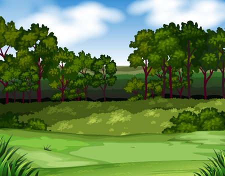 forest clipart: Forest scene with trees and field illustration