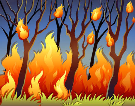 bush: Trees in forest on fire illustration