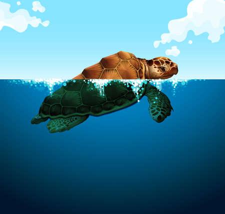 tortuga: Natación de la tortuga en la ilustración del océano