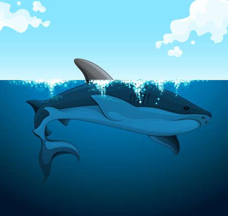 Big shark swimming under the water illustration 免版税图像 - 48902129