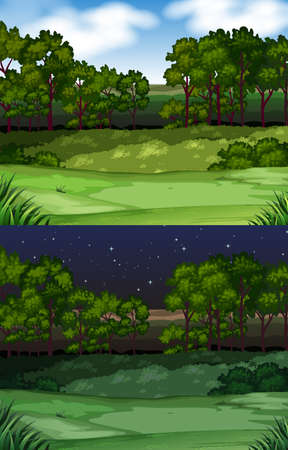 night: Nature scene with field and trees illustration