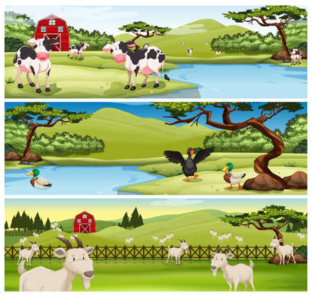 Farm animals living on farm illustration. Stock Photo