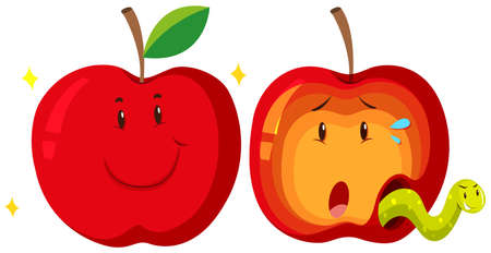 Fresh apple and rotten apple illustration Çizim