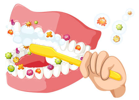 brushing teeth: Brushing teeth and cleaning out bacteria illustration Illustration