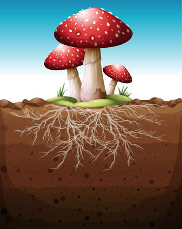 ground: Red mushroom growing from the ground illustration