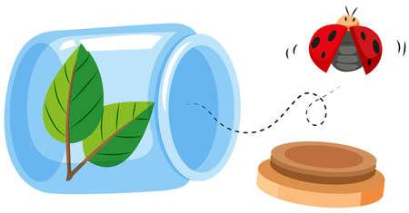 cartoon ladybug: Ladybug flying out of the jar illustration