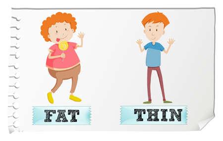 hombre flaco: Frente a la grasa adjetivos y delgado ilustraci�n