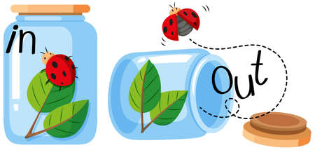 adjective: Ladybug in and out of the jar illustration