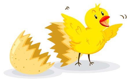 cracked egg: Little chick coming out of the egg illustration