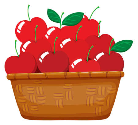 baskets: Fresh cherries in the basket illustration